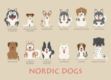 Set of nordic dogs Royalty Free Stock Photography