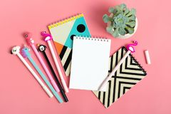 Set of notebooks for notes and pens on pink background. Set of notebooks for notes and pens, succulent, cactus on pink background Place for text Flat lay Top stock images