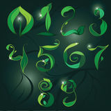 Set of numbers with elements of vegetation. Vector illustration Stock Images