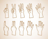 Set of numbers on the hands illustration . just outlines. Modern set with show numbers on the hand front and back number one on hand, number two on hand, number Stock Photography