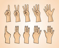 Set of numbers on the hands illustration Stock Images