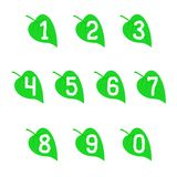 Set of numbers on the leaves. Stock Photo