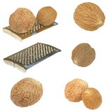 Set Nutmegs  and vegetable grater Isolated Stock Photos