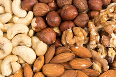 Set of nuts in basket Stock Images