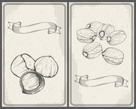Set of nuts: Hazelnuts and Pistachios. Hand drawn sketches. Stock Images