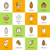 Set of nuts icons Royalty Free Stock Photos
