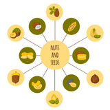 Set of nuts and seeds icons Stock Photo