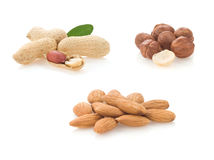 Set of nuts on white Royalty Free Stock Photography