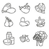 Set of objects in hand drawn outline style on. Paleo diet theme: meat, fish, fruits, vegetables, spices, nuts. Healthy food concept for your design Stock Images