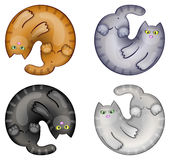 Set oc funny cats Stock Images