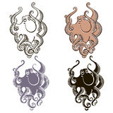 Set of  octopus   on white background. Hand drawn vecto Royalty Free Stock Image