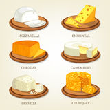 Set odosobneni kawały ser na talerzach royalty ilustracja