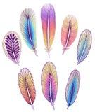 Set odosobneni kolorowi piórka granic kropek eps10 kwiatu gingham stebnowania ściegów trzy wektor Zdjęcie Royalty Free