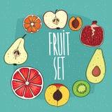 Set odosobnione owoc w przekrojach poprzecznych ilustracja wektor