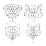 Set odosobnionego poligonal trójboka geometryczny zwierzę stawia czoło Obraz Royalty Free
