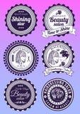 Set odznaki dla piękna i haidressing salonów Obraz Stock