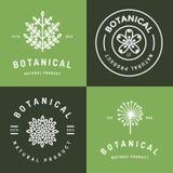 Set odznaki, sztandar, etykietki i logowie dla botanicznego naturalnego produktu, sklep Liścia logo, kwiatu logo Liniowy konturu  Obraz Stock