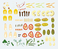 Set Of 23 Spices And Nuts Stock Photography