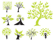 Set Of 9 Green Trees Stock Photos