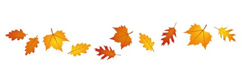 Free Set Of Autumn Leaves In The Wind On White Background Stock Image - 152625511