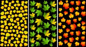 Set Of Backgrounds With Autumnal Leaves. Stock Photo