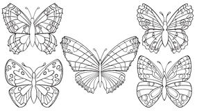 Set Of Butterflies Royalty Free Stock Photography