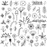 Set Of Elements Flower Doodle Hand Drawn Sketch In Black Line On White Isolated Stock Images