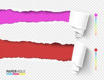 Free Set Of Empty Vector Rip Edge Banner Concepts With Tear Paper Curled Pieces Isolated For Scrapbooking Or Ad. Stock Photography - 150981812