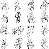 Set Of Floral Elements Vector Royalty Free Stock Images