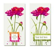 Set Of Flower Greeting Cards Stock Image