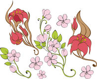 Free Set Of Flowers Royalty Free Stock Photography - 16764257