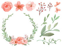 Set Of Flowers And Leaves Vector Royalty Free Stock Photography