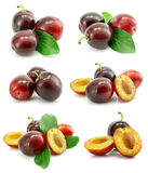 Set Of Fresh Plum Fruits With Green Leafs Royalty Free Stock Photography