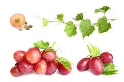 Free Set Of Fresh Ripe Grapes On White Royalty Free Stock Photography - 161240827