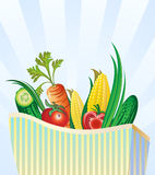 Set Of Fresh Vegetables In Package Stock Photography