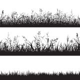 Set Of Grass Seamless Borders. Black Silhouette Of Grass, Spikes And Herbs. Vector. Stock Photography