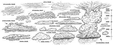 Free Set Of Hand Drawn Clouds, Vector Black Line Sketch. Weather Vintage Illustrations With Different Types Of Clouds. Stock Images - 164548004