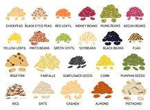 Free Set Of Hand Drawn Handful Of Beans, Legumes, Seeds And Nuts Stock Photos - 179980403