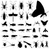 Set Of Insect Vector Royalty Free Stock Image