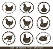 Set Of Labels With Chicken. Stock Photography