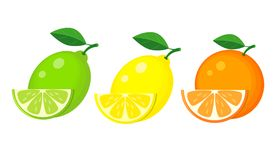 Free Set Of Lemon, Lime And Orange With Slices And Green Leaf. Vector Stock Photography - 119551062