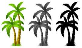Free Set Of Palm Tree Royalty Free Stock Image - 137989376