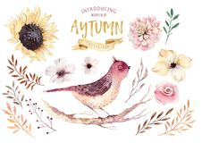 Free Set Of Red And Yellow Autumn Watercolor Leaves, Birds And Berries, Hand Drawn Design Foliage Elements. Royalty Free Stock Photography - 99906617