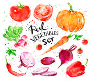 Free Set Of Red Vegetables Royalty Free Stock Image - 79357436
