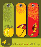 Set Of Retro Sale Nature Autumn Tags Royalty Free Stock Photo