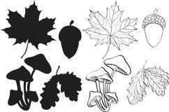 Set Of Silhouette Autumn Plants Stock Photo
