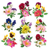 Set Of The Pansy And Roses Stock Photos