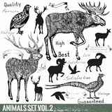 Set Of Vector Hand Drawn Detailed Wild Animals Royalty Free Stock Photo