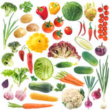 Set Of Vegetables Stock Image