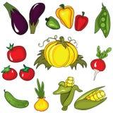 Set Of Vegetables Stock Image
